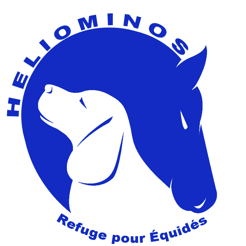 Association-Heliominos